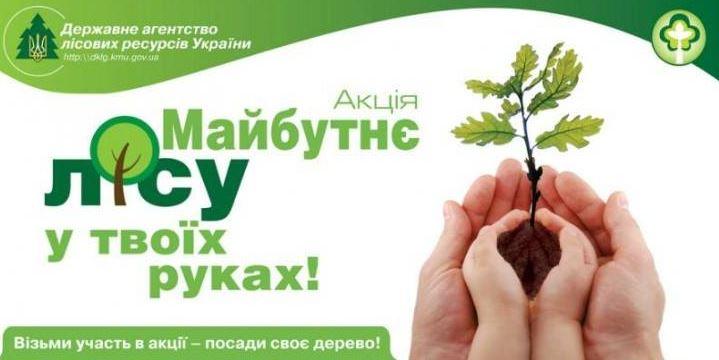 Картинки по запросу картинка «Майбутнє лісу – у твоїх руках»